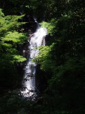 伊豆 二階滝