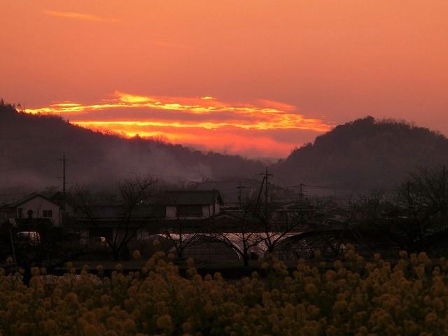 国分寺の夕陽4