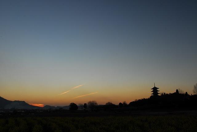国分寺の夕陽5