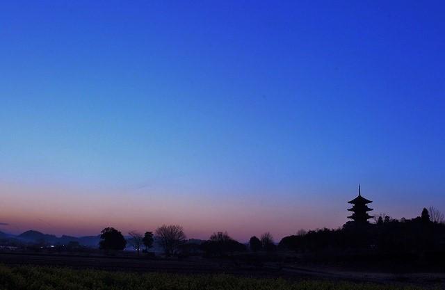 国分寺の夕陽6