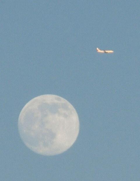 月と飛行機  2015年7月30日撮影