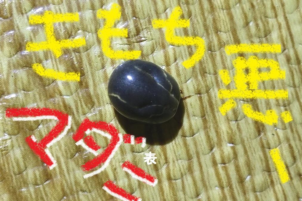 2_20150802193112cb0.jpg