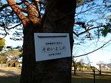 135_201502230116230fb.jpg