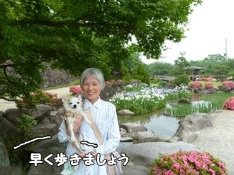 ブログ用006-2015 05 28-143444