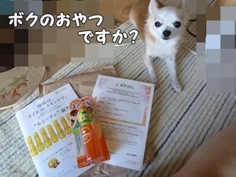 ブログ用006-2015 07 18-142603