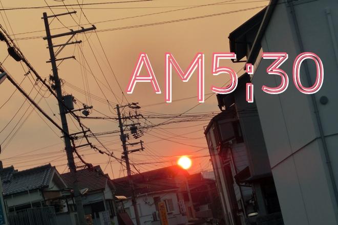 CIMG6330.jpg