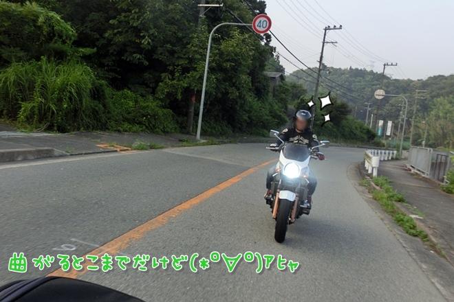 CIMG6337.jpg