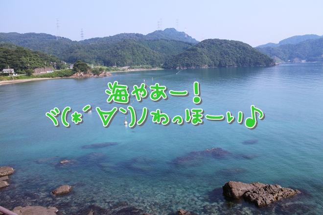 IMG_5971.jpg