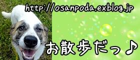 お散歩バナー001