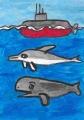 5潜れない潜水艦泳げないイルカ金づちの鯨