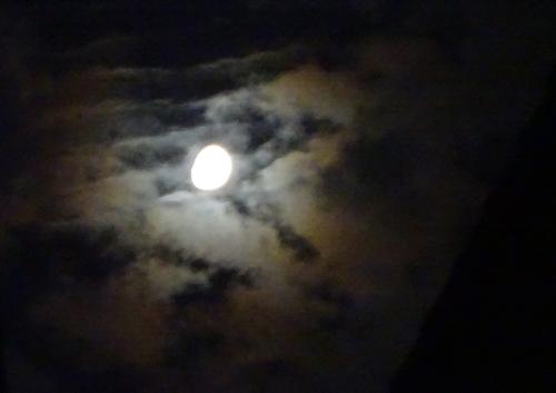 DSC02521夜の月