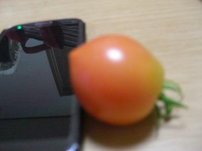 CIMG7360.jpg