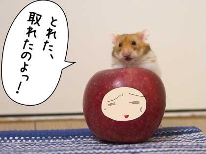 アップル3