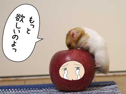 アップル5