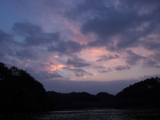 the sky 2014