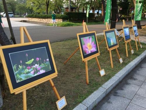 2015-08-02写真展