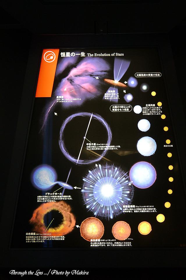 恒星の一生のパネルL1