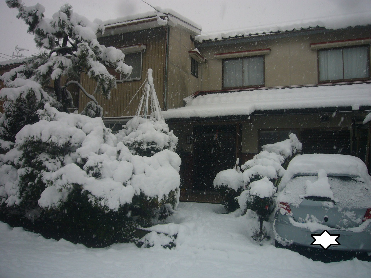 元旦の雪 H27.1.1