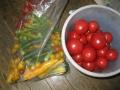 H27.8.11本日の収穫物@IMG_5930