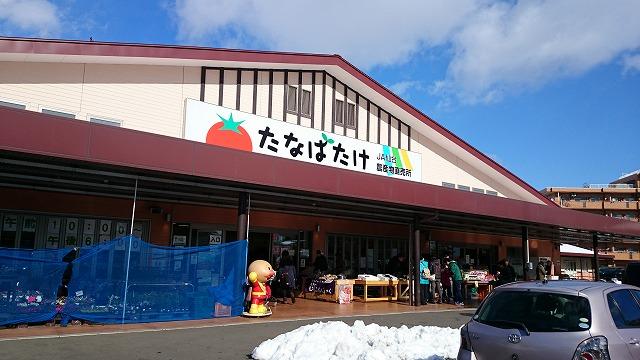 1502nekoyanagi001.jpg
