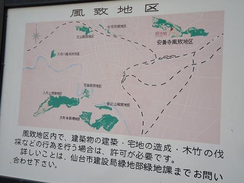 1502yoheinuma002.jpg