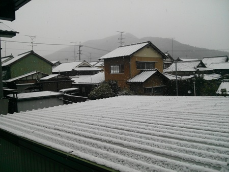 ikazaki2.jpg