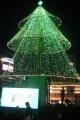 クリスマス・イルミネーション(横浜)
