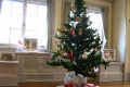 クリスマスツリー(山手西洋館)