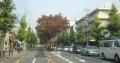 北白川通り(京都)