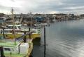 夕照橋より見る野島漁港
