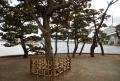 琵琶島より見る平潟湾