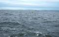 対岸は千葉の木更津