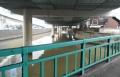 雉子橋から見る日本橋川