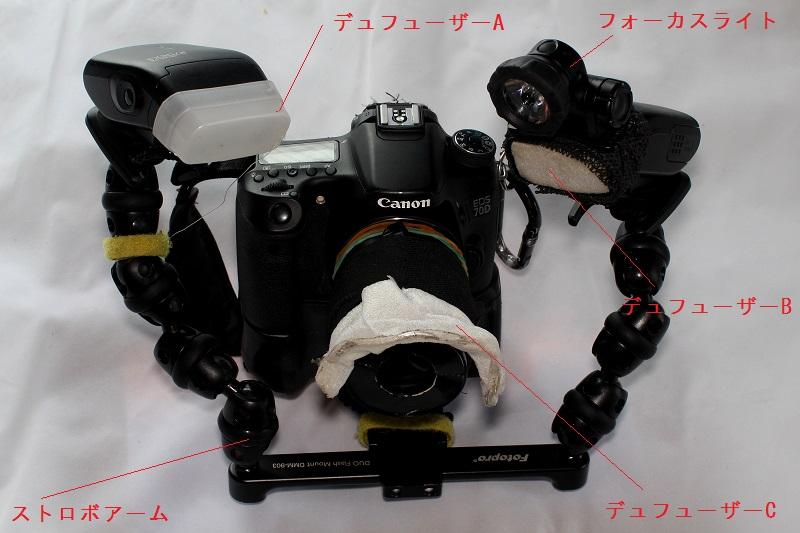 FC2-3695bv.jpg