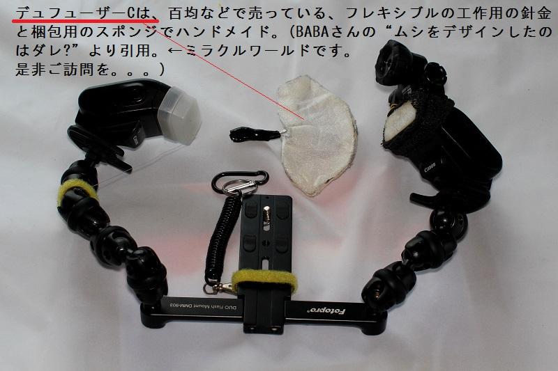 FC2-3696bv.jpg