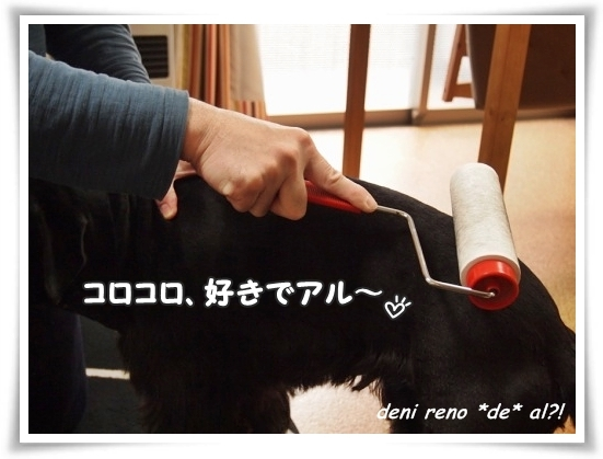 0115_2c.jpg