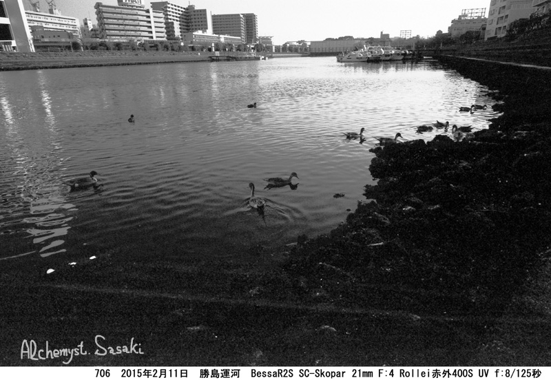 勝島運河706-27