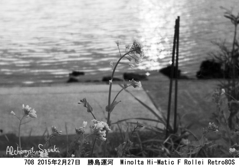 勝島運河708-34 Ⅱ