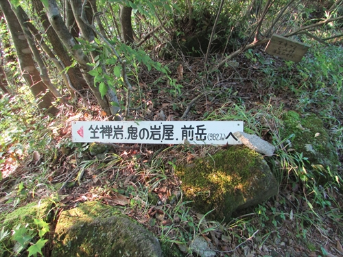 IMG_0526_R.jpg
