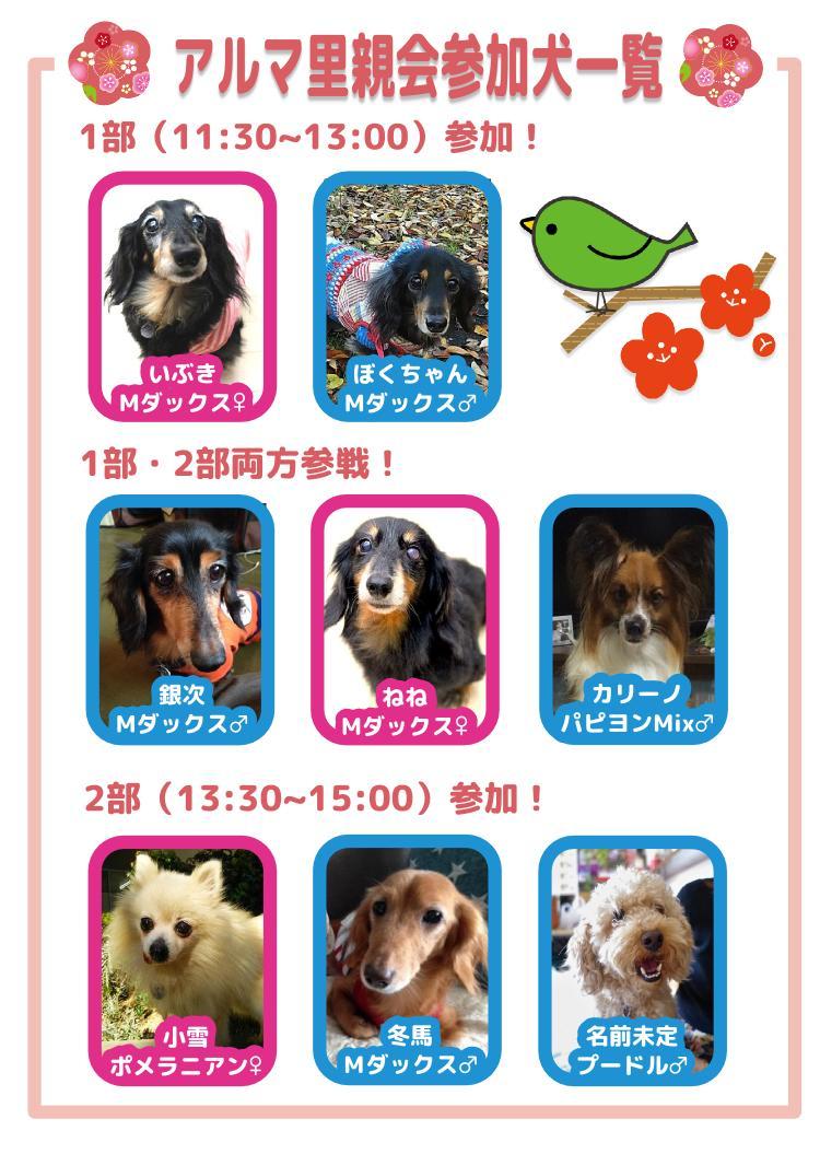 0307satooakai.jpg
