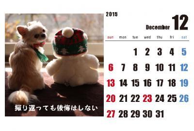 12_convert_20150204004521.jpg