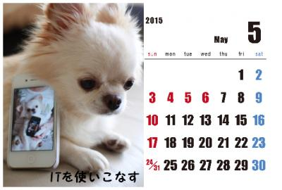 5_convert_20150204004239.jpg