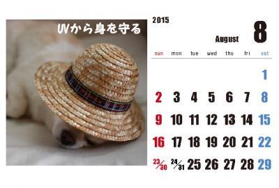 8_convert_20150204004358.jpg