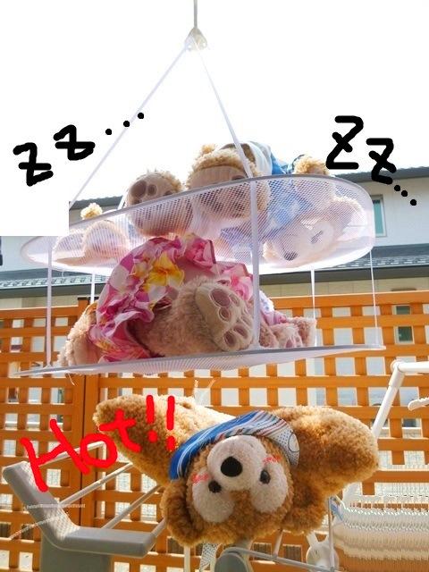 001P1280510-2.jpg