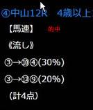 21_117_4.jpg