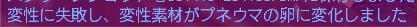 変練攻撃4