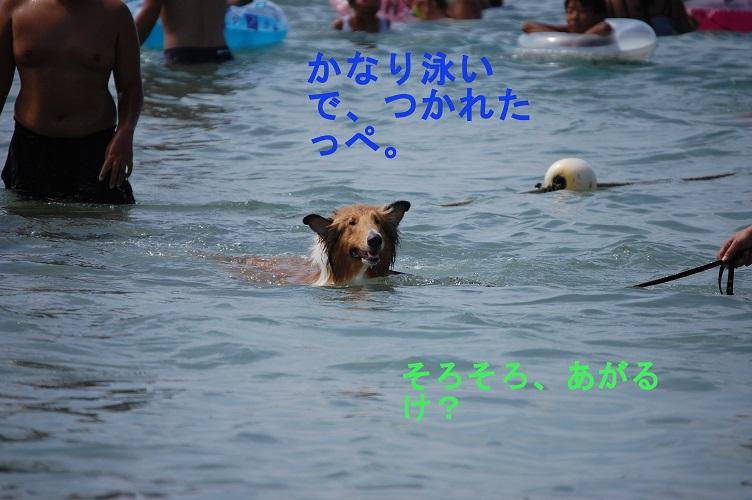 moriya04.jpg