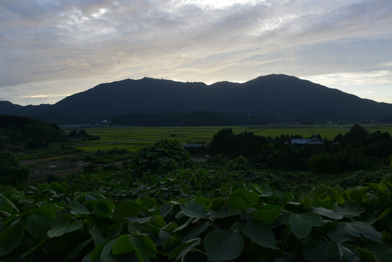弥彦山-3