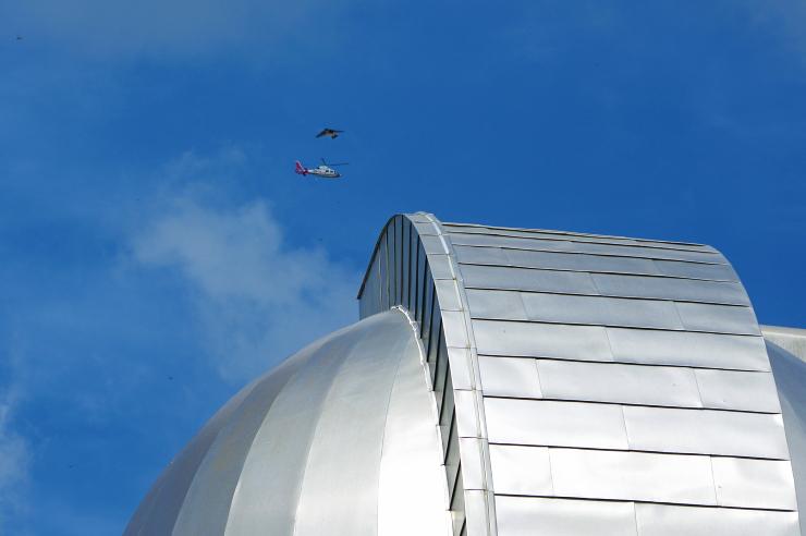 天文台ヘリイワツバメ