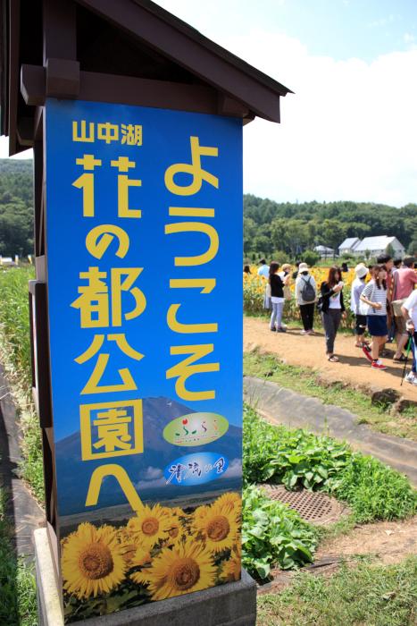 2015_08_14_9509[1]